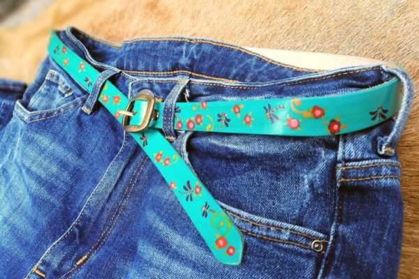 belt teal dragonflies